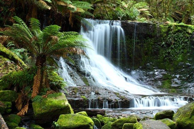 Водопад в Маун-Филд Австралия