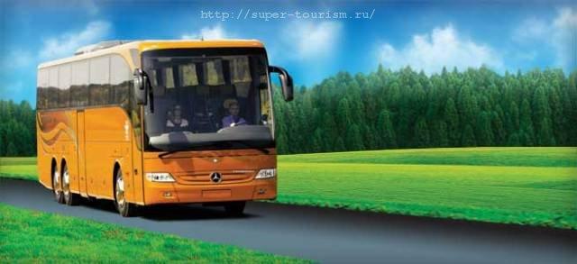 автобусные туры цены