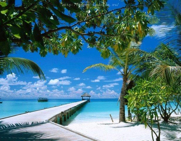 отдых в Доминикане путешествия за границу