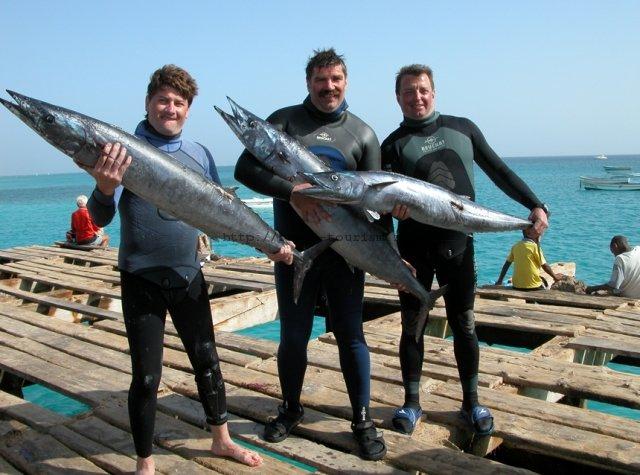 кабо-верде туры рыбалка