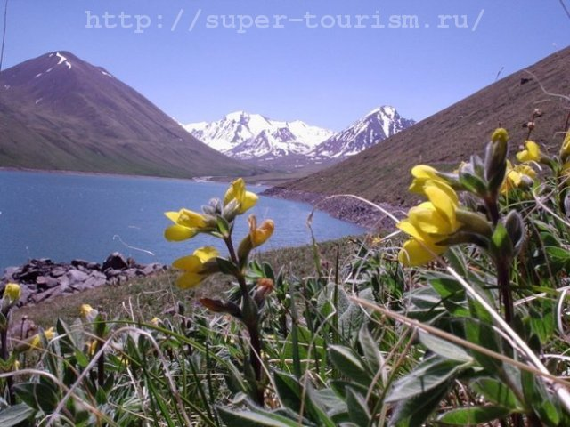 киргизия отдых