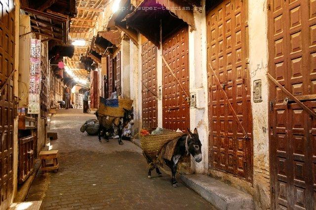 Город Фес туры в Марокко
