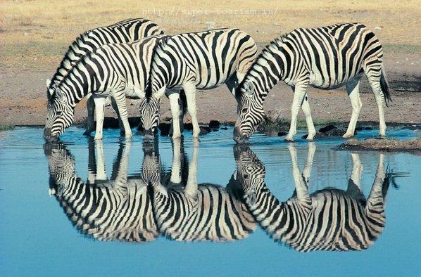Намибия курорты и отели