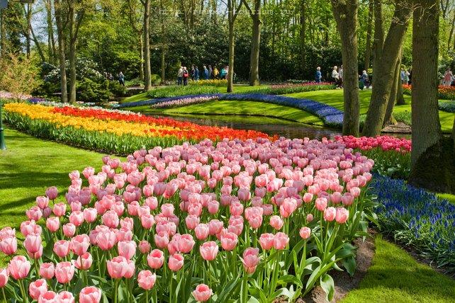 Нидерланды отели и курорты Кекенхоф