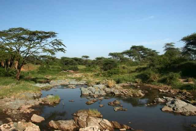 отдых в Танзании Река Серенгети