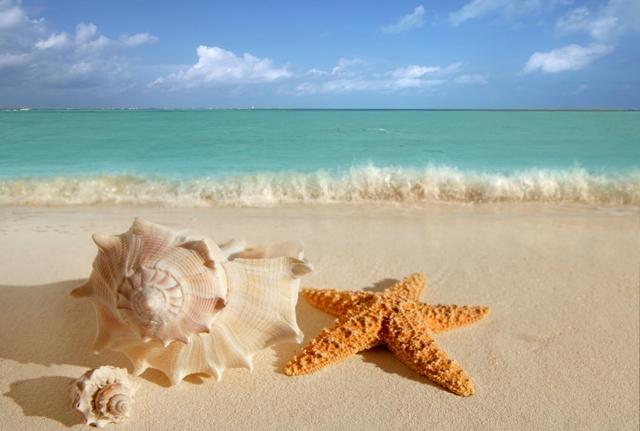 прекрасный пляж Теркс и Кайкос