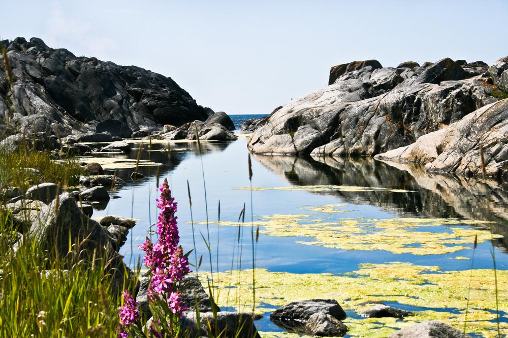 Бухта архипелага отдых в Швеции