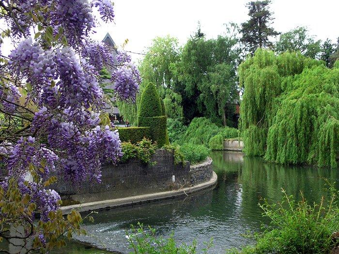 дублинский ботанический сад Ирландия