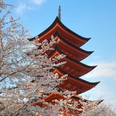 Японский храм, туры в Японии