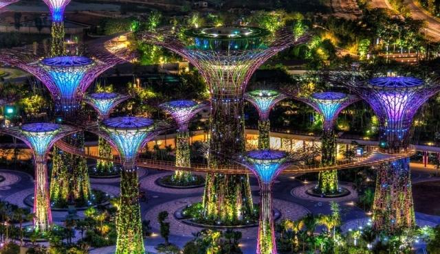 отдых в сингапуре город сад