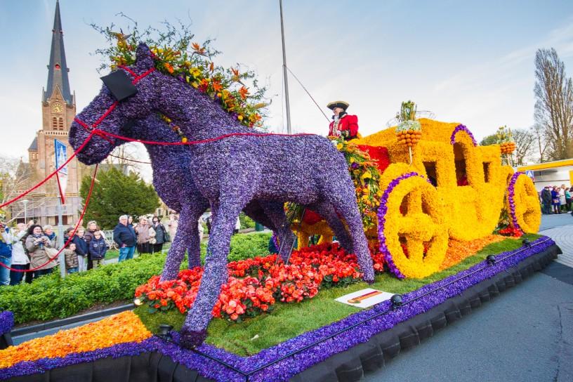 парад цветов Голландия